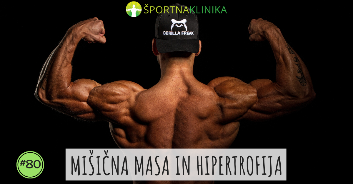 Mišična masa in hipertrofija